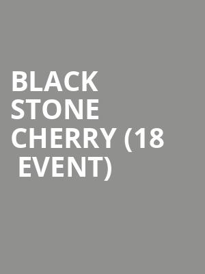 Black Stone Cherry (18+ Event) at Manchester Music Hall